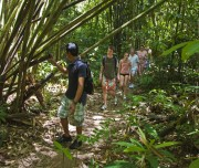 Jungle trekking Khao Sok