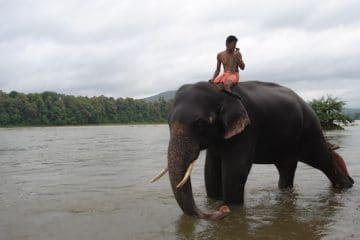 reis zuid-india