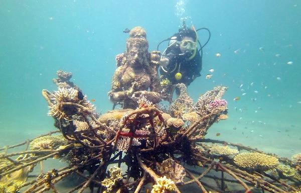 Snorkelen en duiken Pemuteran