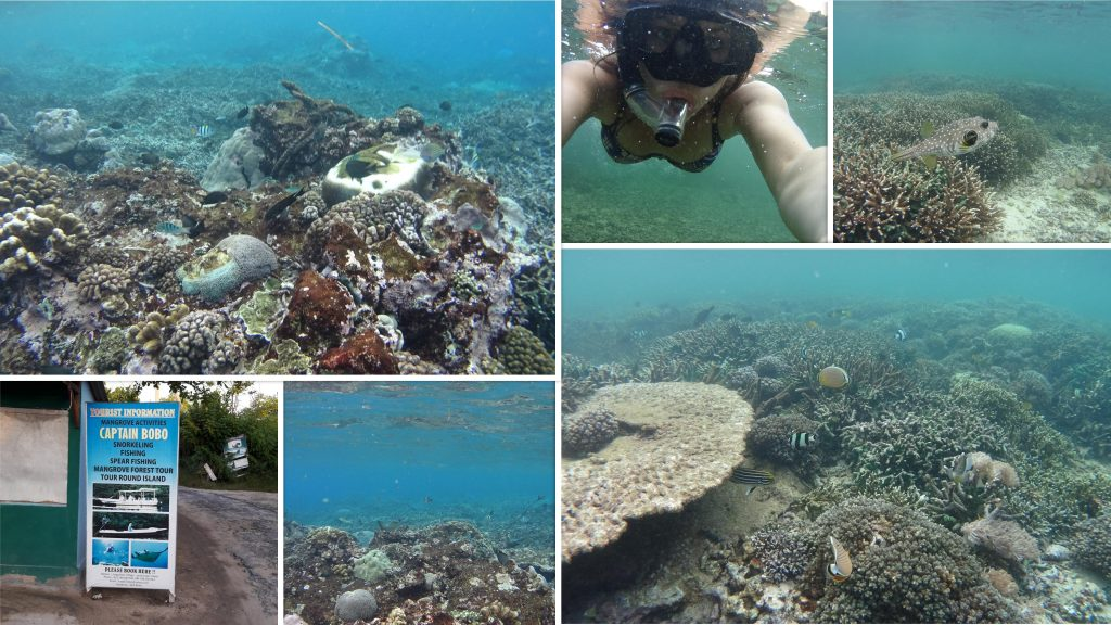 snorkelen Nusa Lembongan
