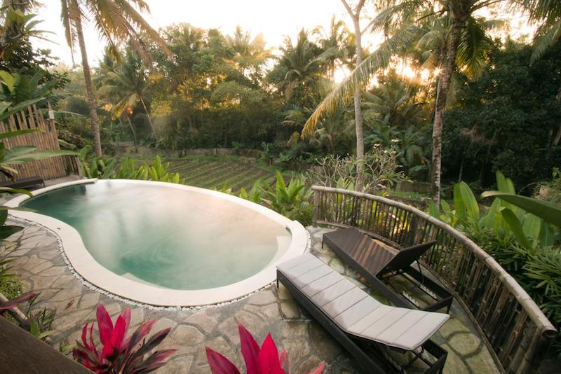 Zwembad Lotus villa Ubud