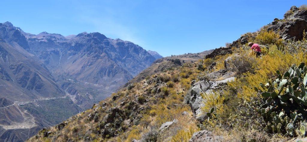 De Colca Canyon (Cabanaconde)