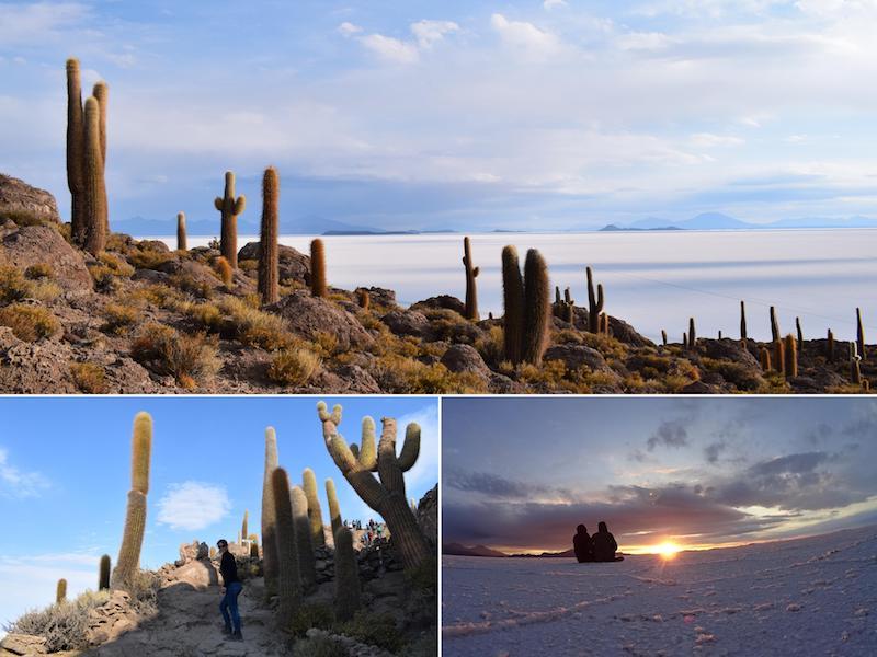 Uyuni Inca Wasi cactus eiland