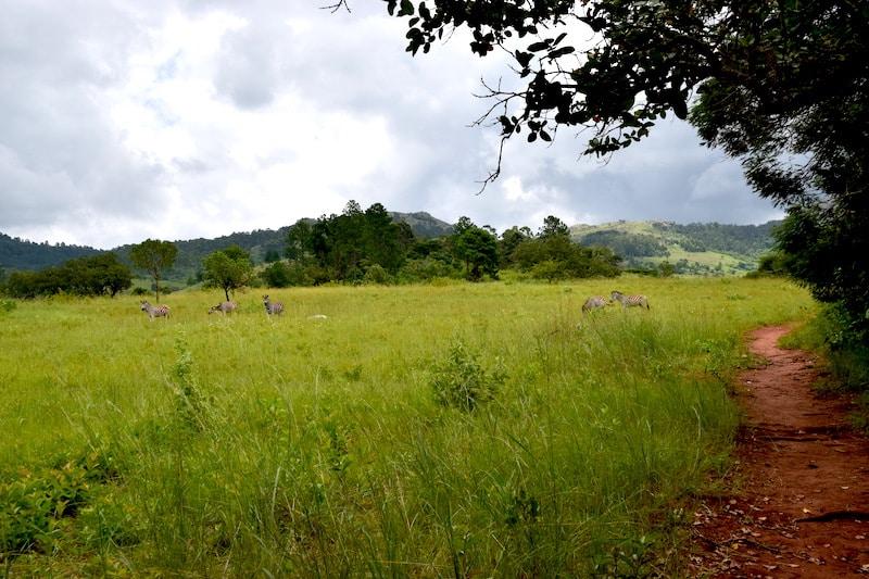 Wandelen Mlilwane swaziland