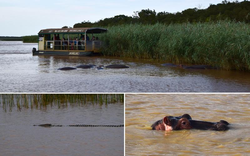 Hippo & croc tour st lucia