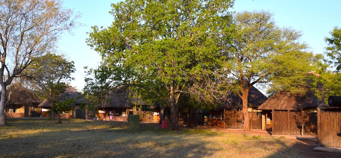 Krugerpark overnachten lodges
