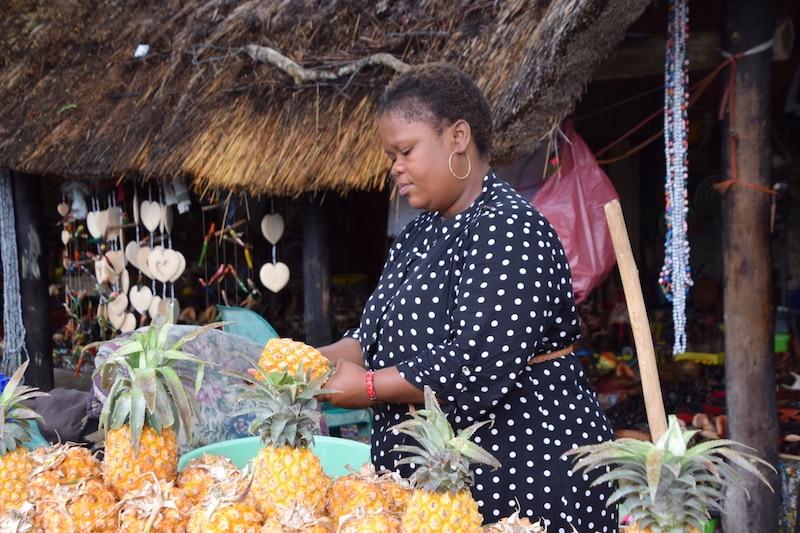 Stad van de ananas en hippos
