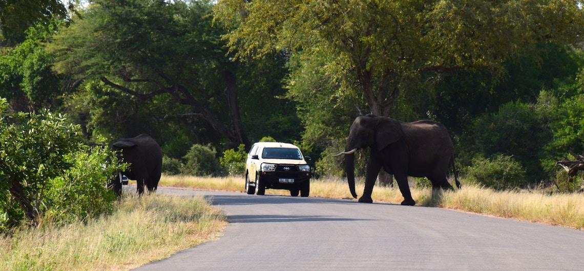 Goedkoop overnachten Krugerpark