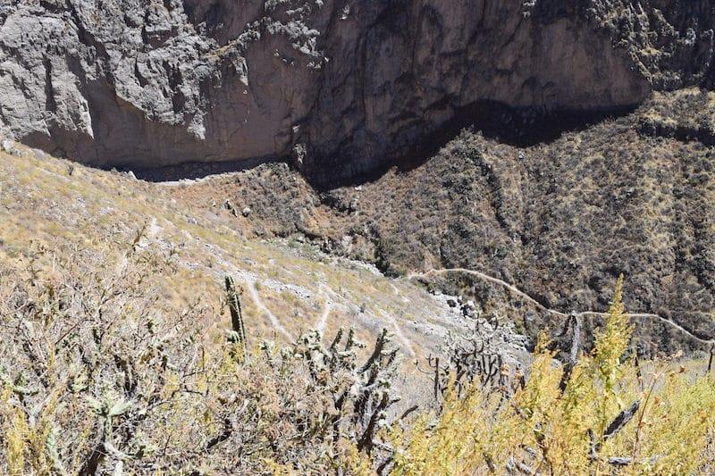 Pad colca canyon