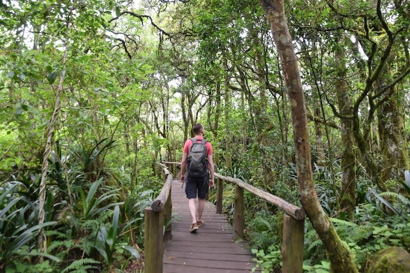 Rainforest Panoramaroute Zuid Afrika
