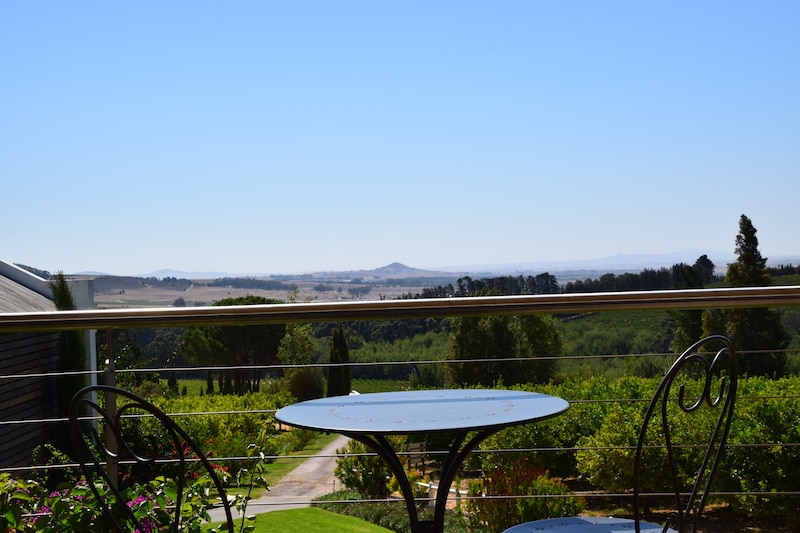 Wijn proeven Marianne Stellenbosch