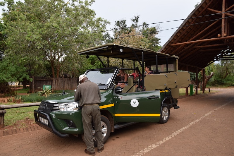 safari Krugerpark