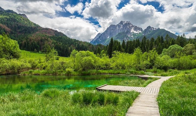 zelenci-natuurreservaat