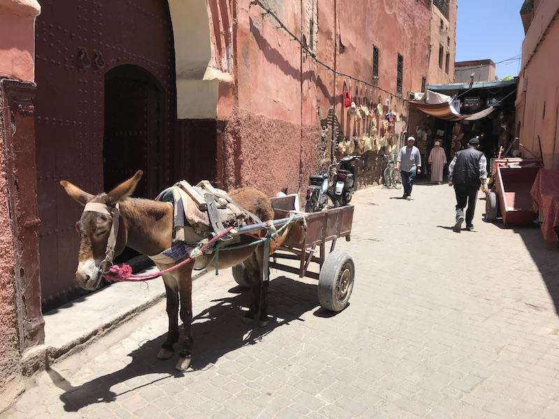 waar overnachten Marrakech