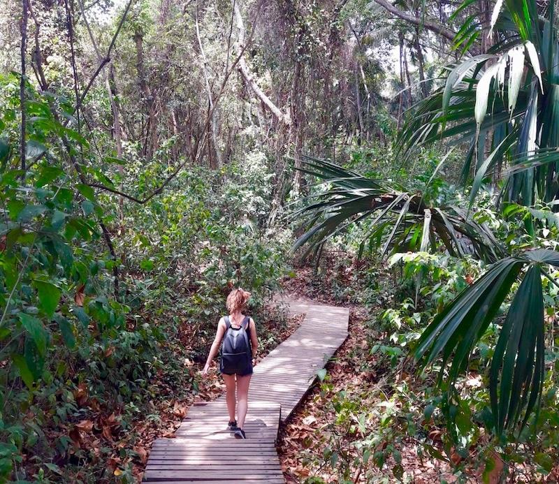 Tayrona National park tips