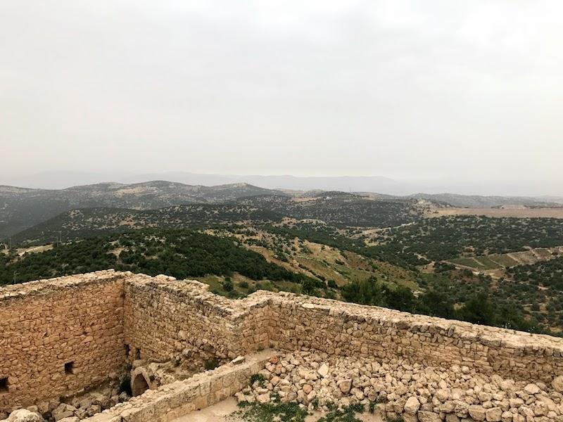 Aljoun - aljun castle - jordanie