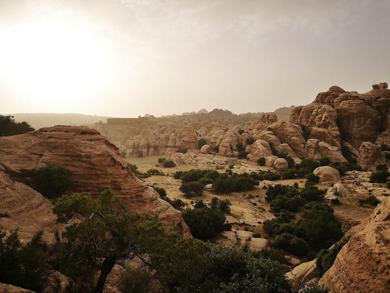 Dana Nature reserve bezoeken