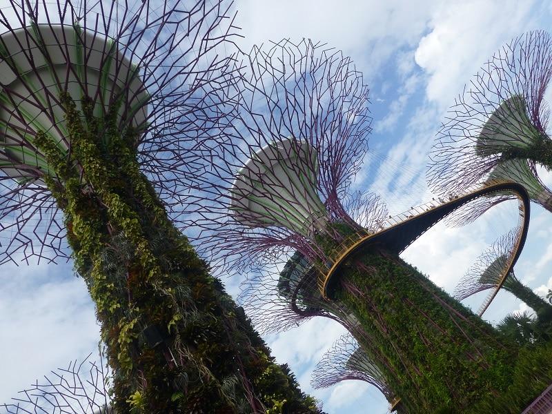 Singapore bezienswaardigheid Gardens by the Bay