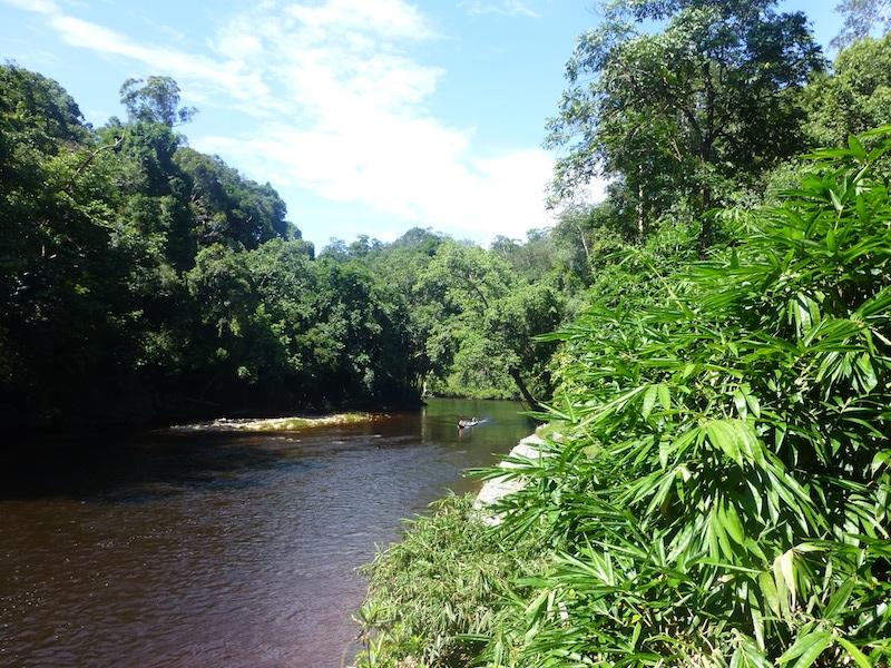 Taman Negara Maleisie