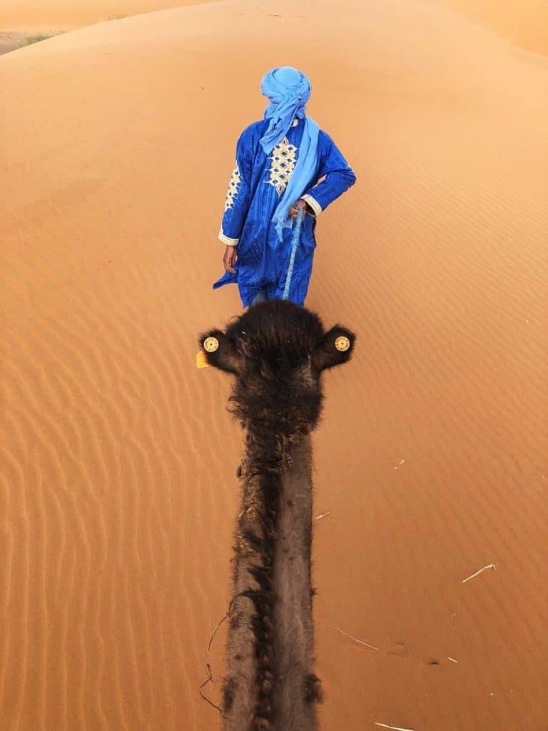 kameel dromedaris berber driedaagse woestijnsafari merzouga marokko