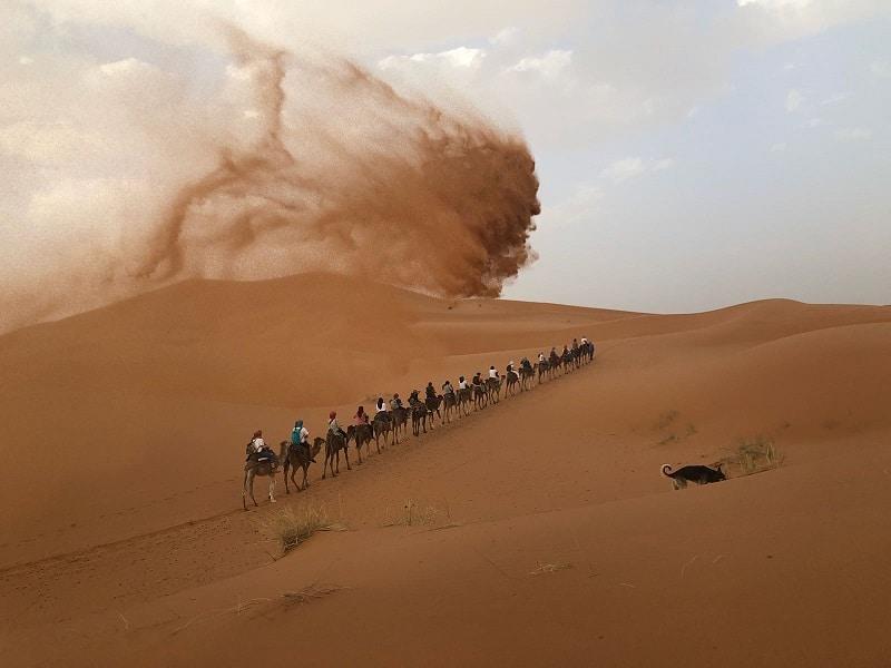kamelenrit driedaagse woestijnsafari merzouga marokko