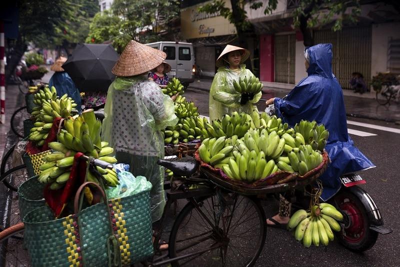 Hanoi Streetfood Vietnam highllights bananen