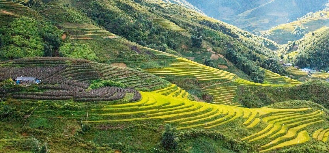 Highlights Vietnam en bezienswaardigheden