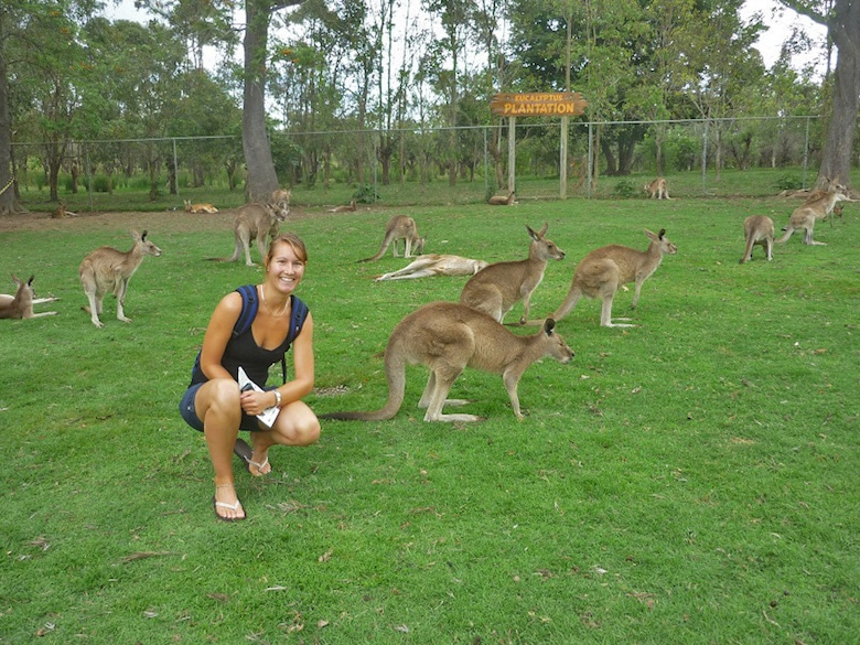 Brisbane Koala lone pine sanctuary kangoeroe