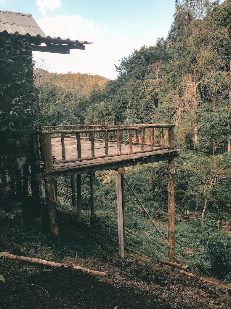 Chiang Dao jungle trekking Chiang mai