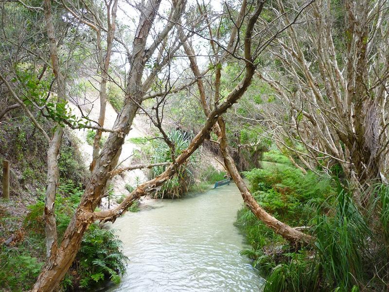 zien en doen Fraser Island