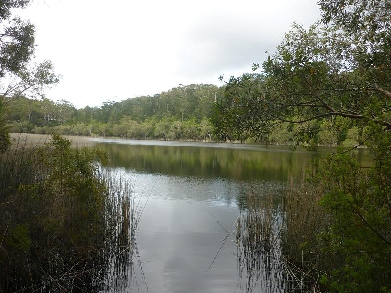 Lake allom, Fraser Island, Australië