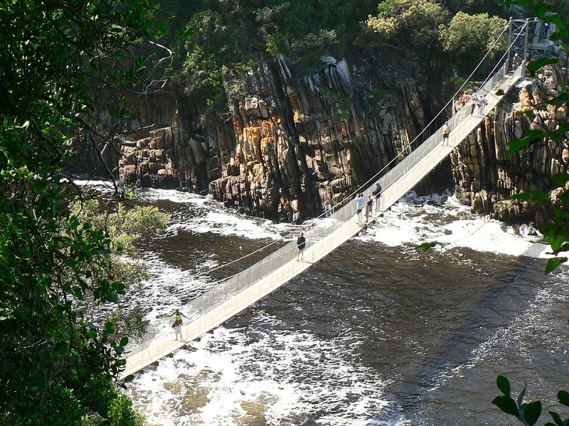 Suspension bridge Tsitsikamma NP