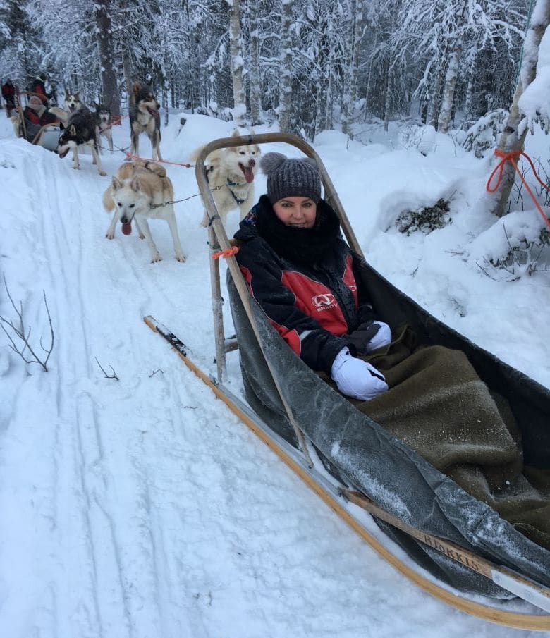 Lapland huskies slee tour