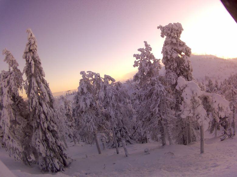 Finland Lapland excursie tips