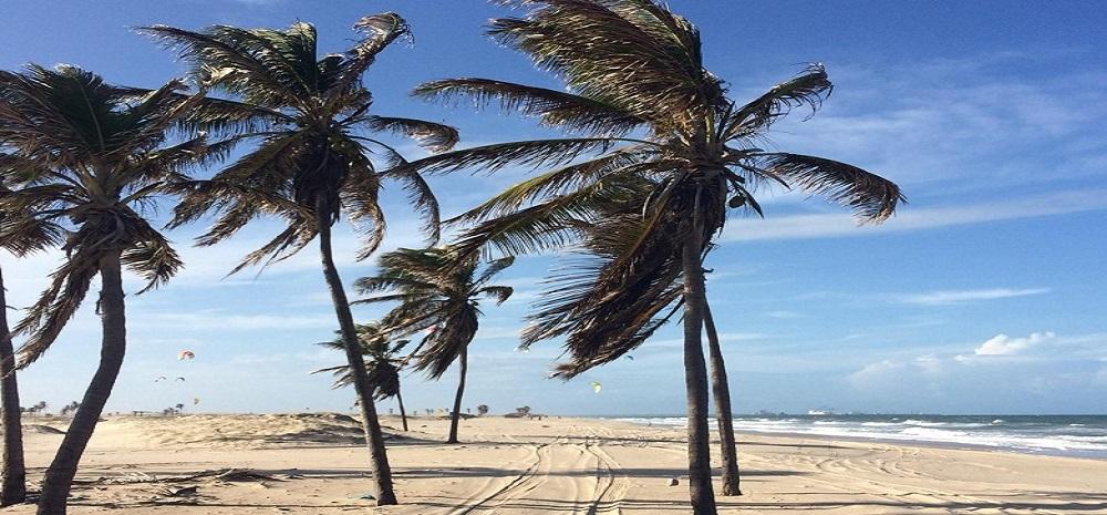 surfen surfvakantie Brazilië