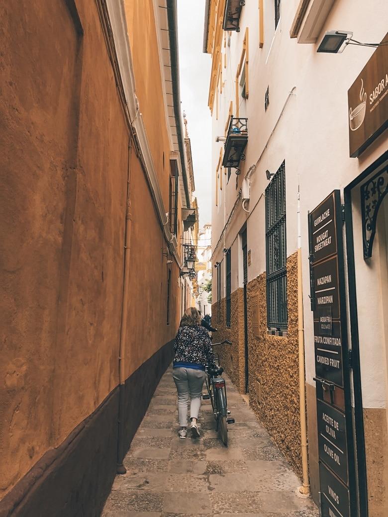 Tips stedentrip Sevilla fietstocht