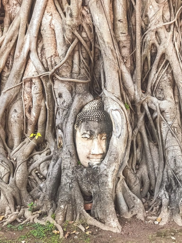 Tempels Ayutthaya bezoeken