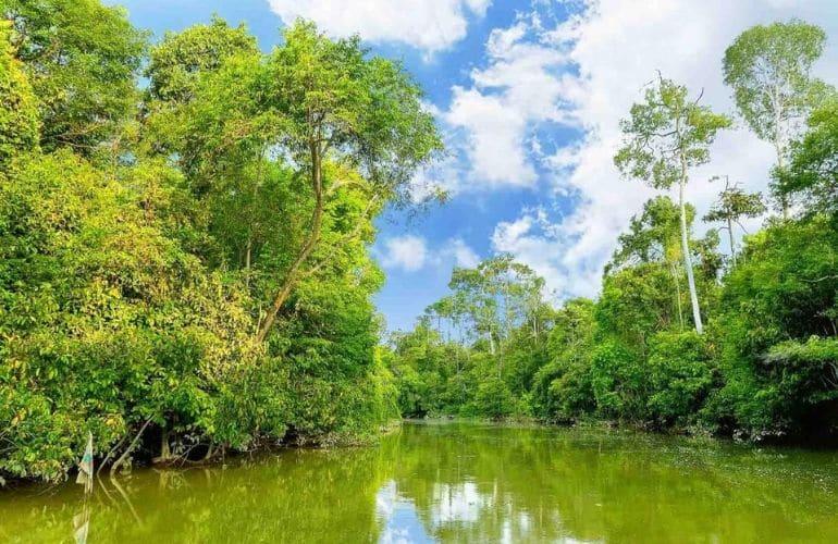 Sungai Kinabatangan riviertochten