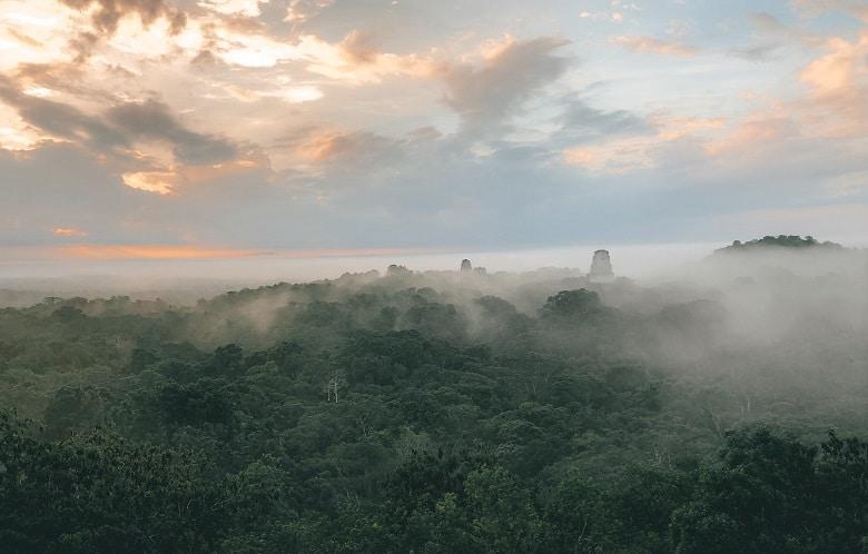 Wat zien en doen in Tikal Guatemala