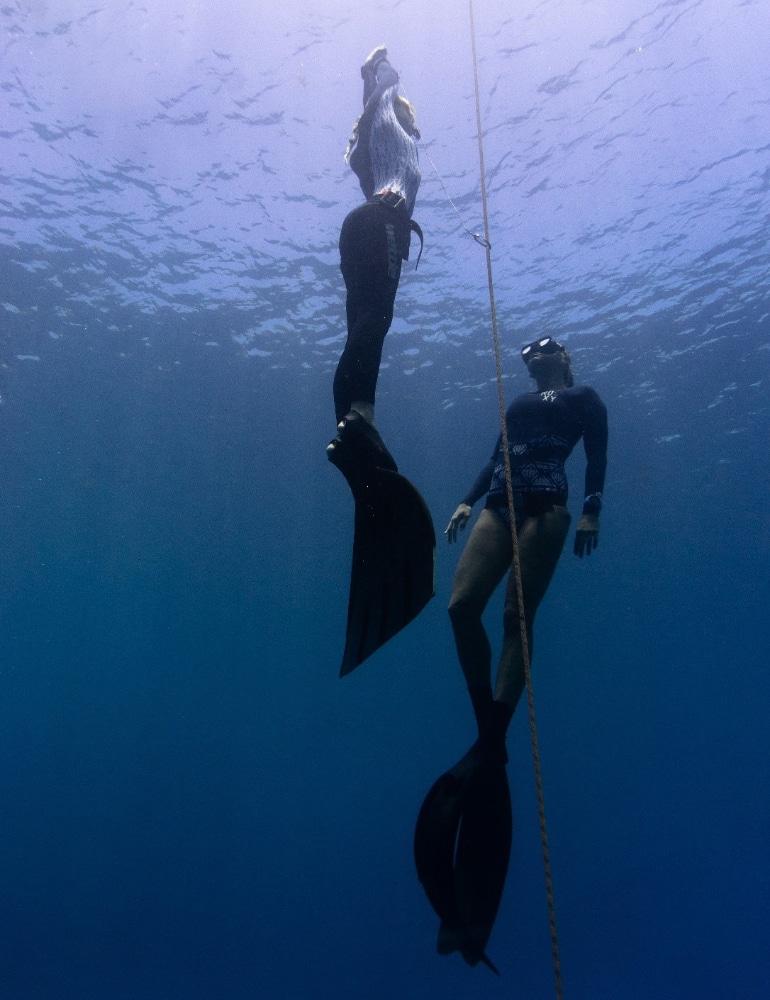 duiken panglao