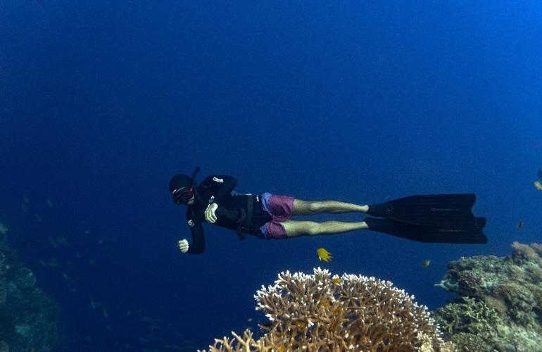 filipijnen freediving