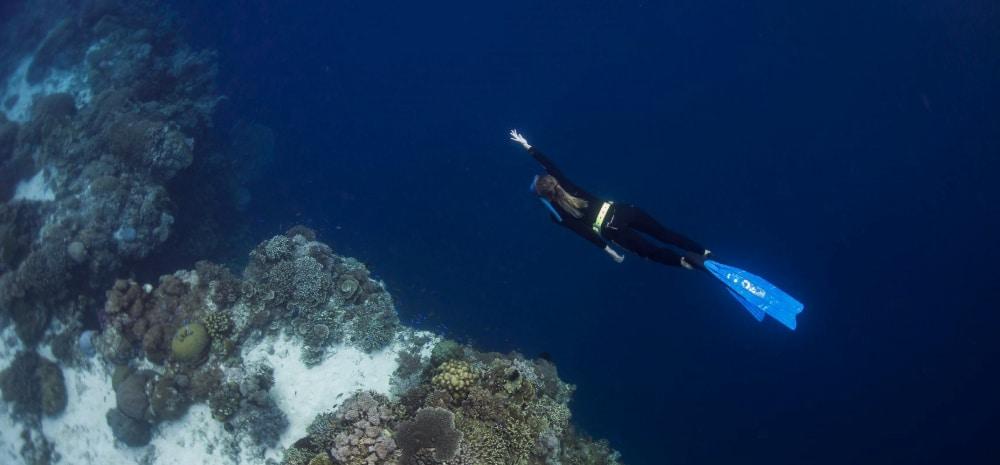 duiken bohol