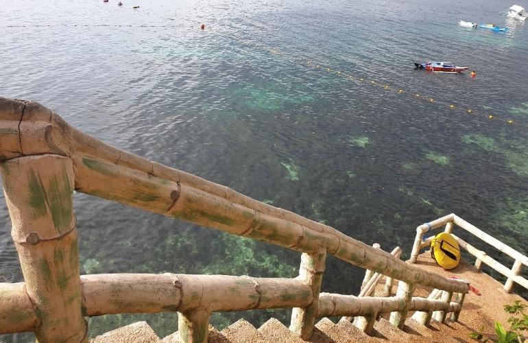 duiken panglao filipijnen