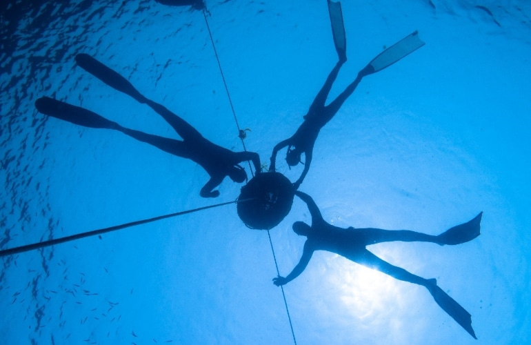 freediven panglao filipijnen