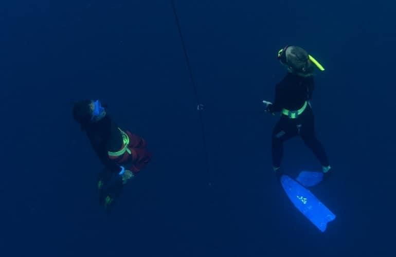 bohol duiken