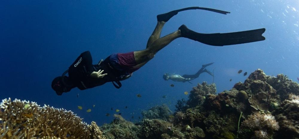 freediven duiken filipijnen