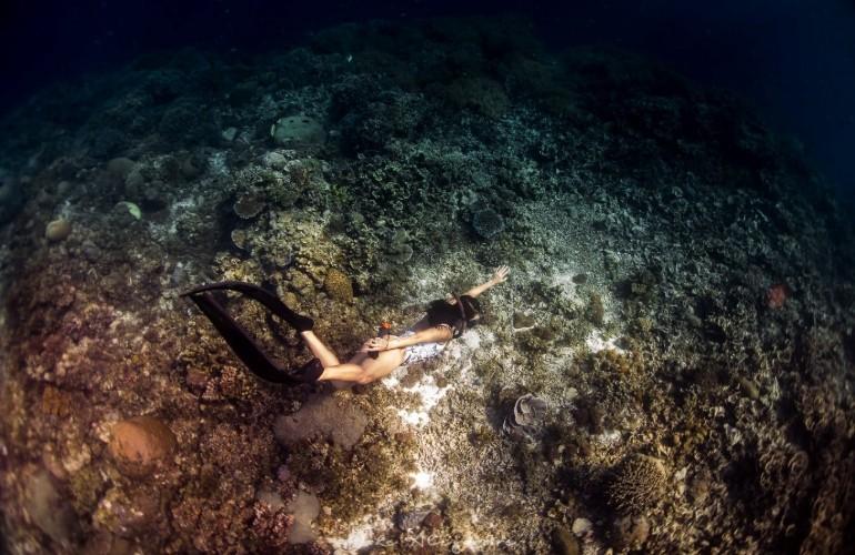 duiken filipijnen