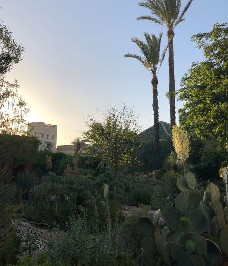 tuin bezoeken in marrakech tips