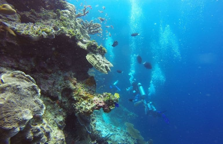 scuba diven duiken borneo