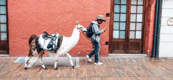 Wat doen in Bogota